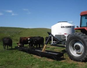 Eze-Feeder by Reimer Welding & Manufacturing PTH Frame